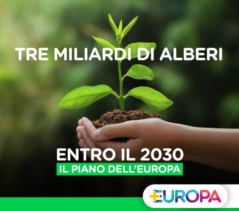 Il piano dell'Europa per la Biodiversità: 3 miliardi di alberi entro il 2030